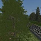 Strecke (20)