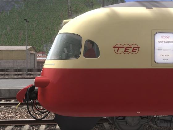 TEE (6)