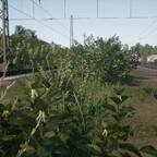 Strecke HRR (20)