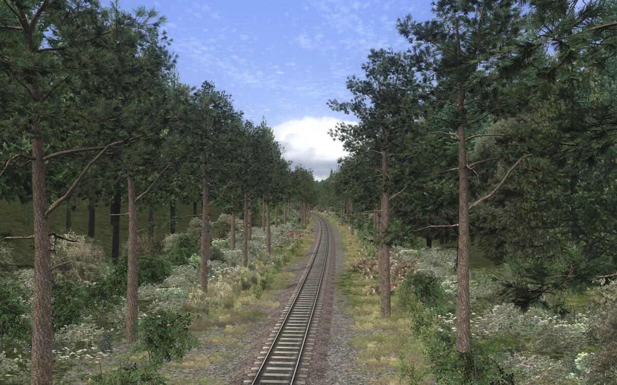 Norddeutsche Bahn (35)